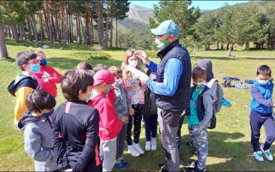Actividades deportivas en plena Sierra de Madrid
